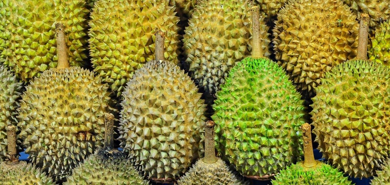 Не ешьте вонючие фрукты в китайской гостинице